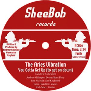 THE ARIES VIBRATION - You gotta get up (to get on down) - 7inch (SP)