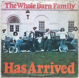 THE WHOLE DARN FAMILY - Has arrived - LP