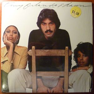 TONY ORLANDO - He don't love you - LP