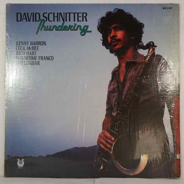 DAVID SCHNITTER - Thundering - LP