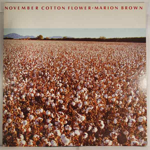 Marion Brown November Cotton Flower